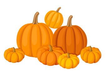 Group of seven orange pumpkins. Vector illustration.
