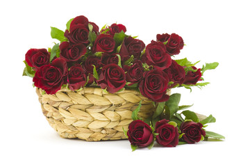 red roses in a basket