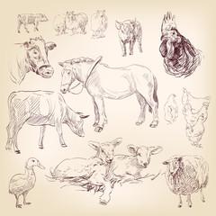 animal farm collection