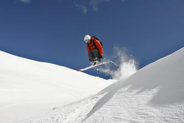 Free ride skier