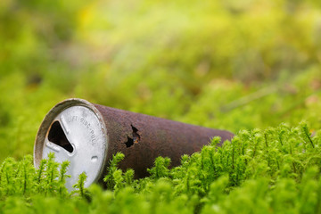 Old rusty beer can in nature