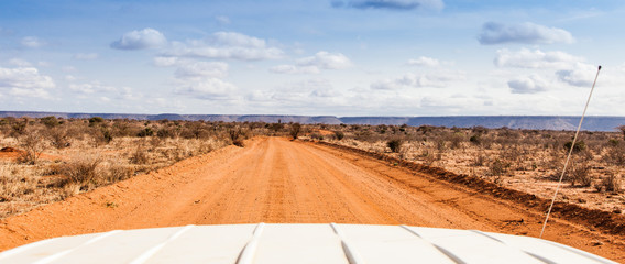 Fotoväggar - Safari in Kenya