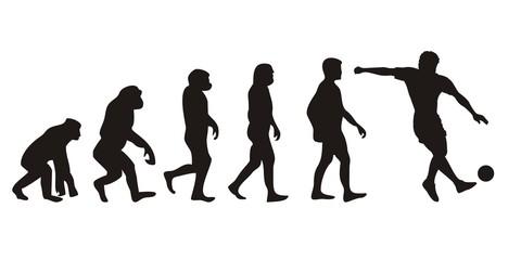 Vom Affen zum Fussballer (Menschen)