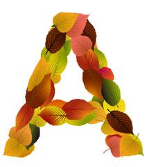Buchstabe aus Blättern - A