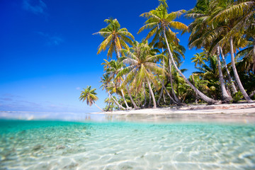Foto auf AluDibond Strand Tropical island