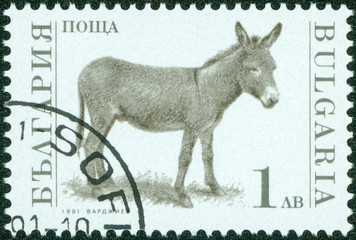 stamp printed in the Bulgaria, devoted to farm animals, donkey