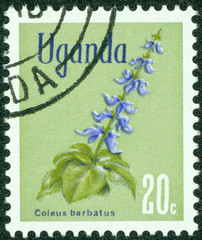 stamp printed in Uganda shows Flowers
