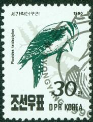 stamp printed in DPR Korea, shows bird