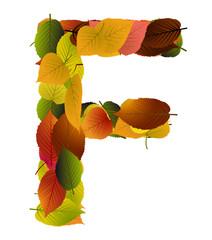 Buchstabe aus Blättern - F