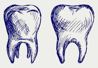Tooth. Doodle style