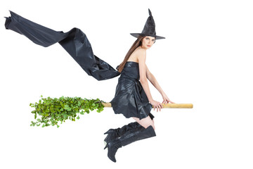 eco witch