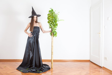 witch with broomstic