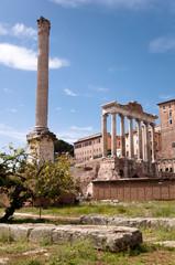 Fototapete - Columns Ruins at foro romano - Roma - Italy