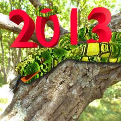 Big snake on a tree