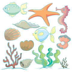 sea animals and plants