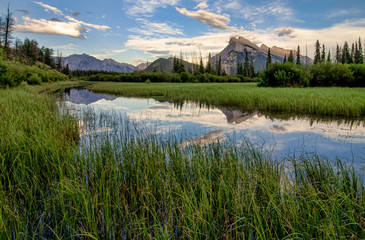 Fotomurales - Vermilion Lakes Marshland With Mountain Reflection