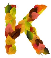 Buchstabe aus Blättern - K
