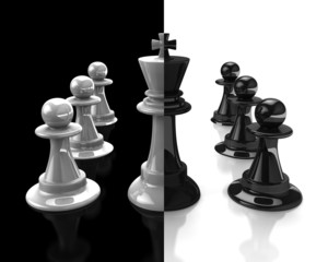 King and pawn. Black and white.