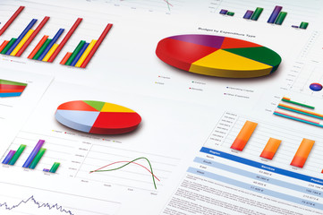 Obraz Graphs and Charts Report - fototapety do salonu