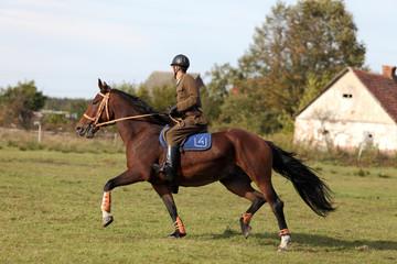 Dżokej w wojskowym mundurze na koniu