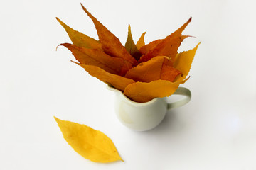 Autumn leaves in vase isolated on white