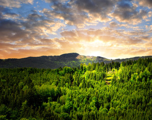 sunset over the national park Sumava in Czech Republic