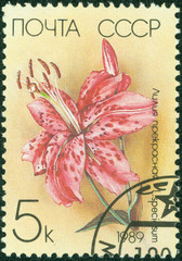 stamp printed in the USSR shows a Japanese Lily
