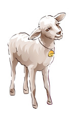 icon sheep