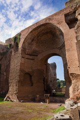 Fotomurales - Terme di Caracalla Swimming pools ruins vertical - Roma - Italy