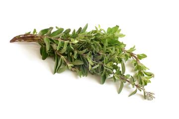 Fresh thyme twigs