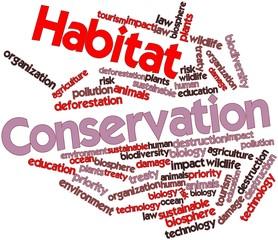 Word cloud for Habitat Conservation