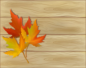 decorative card with autumn leaves
