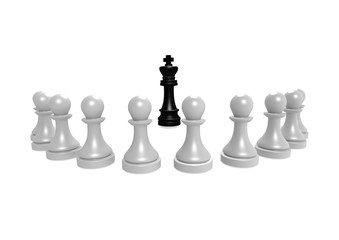 king and pawns