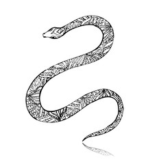 Beautiful vintage art snake