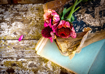 picture of a flowers lying on an antique books