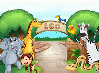 a zoo and the animals