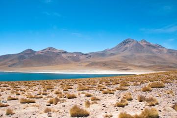 Papiers peints Amérique du Sud Miscanti lagoon in San Pedro de Atacama, Chile