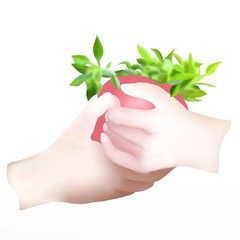Two Hand Holding A Pot with A Little Plant