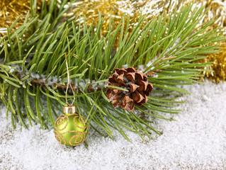 Fir-tree with christmas ball