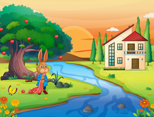 Canvas Prints River, lake a rabbit in nature