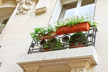 Flowers on the window Parisian house. France