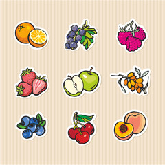Fruits and berries. Set