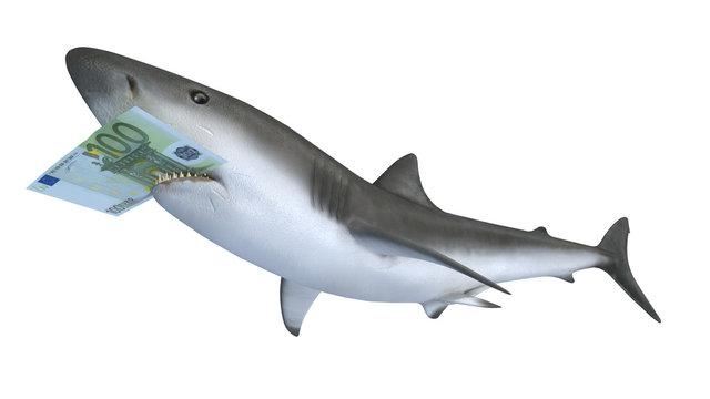 shark biting a euror banknote