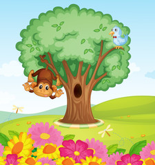 Poster Oiseaux, Abeilles a monkey, a bird and a tree