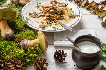 Forest mushroom soup and ingredients