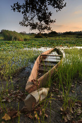 Canoa no lago