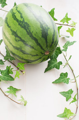 Whole watermelon with copyspace