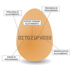 La carta d'identità dell'uovo