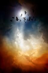 Fototapete - Ravens in dark sky