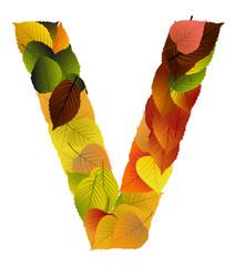 Buchstabe aus Blättern - V